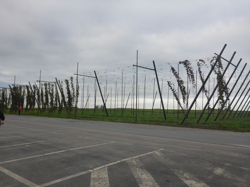 Belgie-2019_114