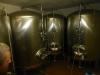 016_tanky-s-psenicnym-pivem