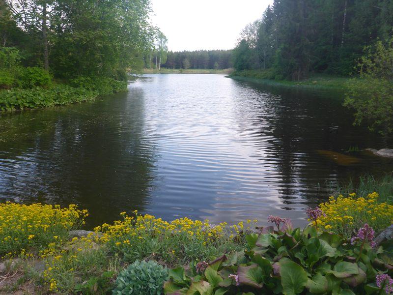 pobalti-estonsko-kabliku_26
