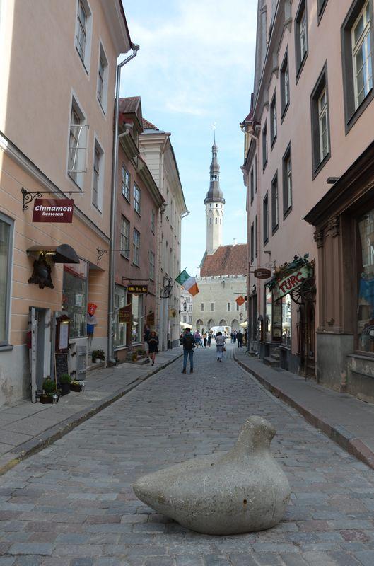 pobalti-estonsko_tallinn__29